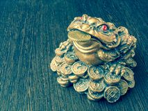 Money frog on a wooden table with a coin in its mouth stock image