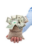 Money given to you as a gift or grant. Dollars in moneybag Royalty Free Stock Photography