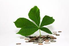 Money gives life Royalty Free Stock Photos