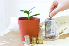 Money in a glass jar. Royalty Free Stock Photo