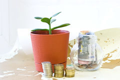 Money in a glass jar. Stock Photo