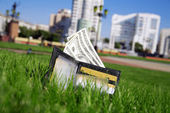 Money in grass Stock Photos