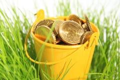 Money in grass. stock photo