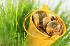 Money in grass. Stock Photography