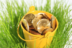 Money in grass. Royalty Free Stock Photography