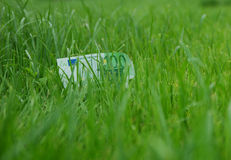 Money at grass. One hundred euro notes at grass meadow Stock Image