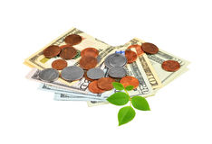 Money and green leaf Royalty Free Stock Image