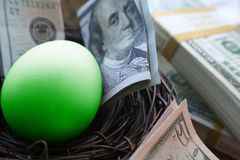 Money With Green Nest Egg High Quality royalty free stock image