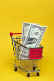 Money for the groceries. Money in a shopping cart Royalty Free Stock Images