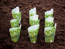 Money in the ground. Selective focus Stock Photography