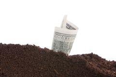 Money in the ground on a white background Royalty Free Stock Photos