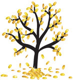 Money growing on branches Stock Photography