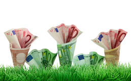 Money growing in grass Stock Photography