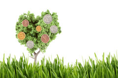 Money growing on tree. Small miniature tree growing silver gold and copper, coins in different currency like dollars, yen, euro, and the British pound with Royalty Free Stock Image