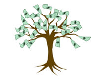 Money growing on tree Stock Image