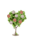 Money growing on tree Stock Photography