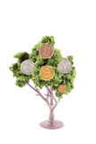 Money growing on tree. Small miniature trees growing silver gold and copper, coins in different currency like dollars, yen, euro, and the British pound Royalty Free Stock Images
