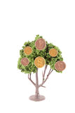Money growing on tree. Small miniature trees growing  gold and copper, coins in different currency like dollars, yen, euro, and the British pound Royalty Free Stock Photo
