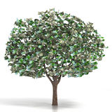 Money growing on a tree Royalty Free Stock Images