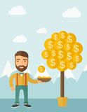 Money Growing on trees Stock Photography
