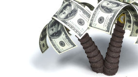 Money growing on trees, dollars Stock Images
