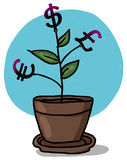 Money grows on a plant in a pot illustration Royalty Free Stock Image