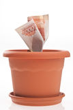Money growth Stock Image