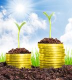 Money growth. Golden coins in soil with young plant. Financial metaphor Stock Photos