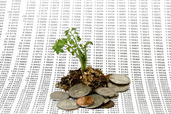 Money Growth Concept. Plant seeded with numbers in progression and roots with coins - Money Growth Concept Royalty Free Stock Photos