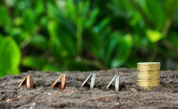 Money growth concept coins in soil Royalty Free Stock Photo