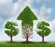 Money Growth. Concept and investing in new business opportunities with future potential to grow as two trees shaped as dollar signs transferring their leaves to Stock Photo