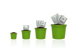 Money growth concept. Money in the pots on the rise. money growth concept Royalty Free Stock Photography