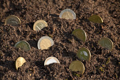 Money growth euro cent coins growing from soil. Selective Stock Photo