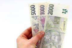 Money in hand, Czech Stock Photo