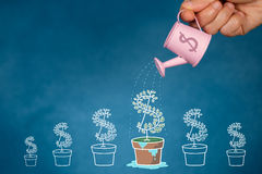 Money. Hand with watering can pouring  to growing tree, Savings concept, Financial planning to grow Stock Images