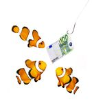 Money on the hook. And three clown fish - business metaphor Stock Photo