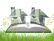 Money house origami in the meadow Royalty Free Stock Photography
