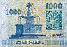 Money of Hungary 1000 forint macro Royalty Free Stock Photography