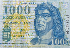 Money of Hungary 1000 forint macro Royalty Free Stock Photo