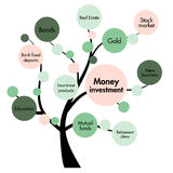 Money investment concept tree Stock Photos