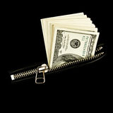 Money in jacket. Money in; pocket of jacket Royalty Free Stock Photos
