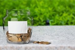 Money Jar with coins on nature background stock image