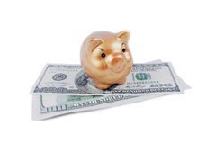 Money keeper asian pig Royalty Free Stock Photography