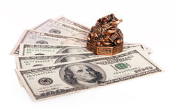 Money keeper frog Stock Image