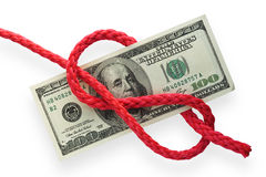 Money and knot 02 Stock Image