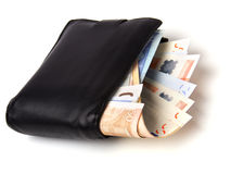 Money in leather  purse Stock Image
