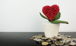 Money for the Love to grow concept. With copy space Stock Photos