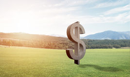 Money making and wealth concept presented by stone dollar symbol on green grass Stock Photography