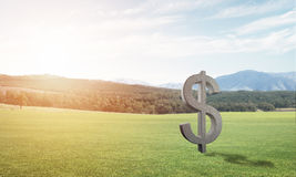 Money making and wealth concept presented by stone dollar symbol on green grass Royalty Free Stock Image