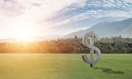 Money making and wealth concept presented by stone dollar symbol on green grass Royalty Free Stock Photo